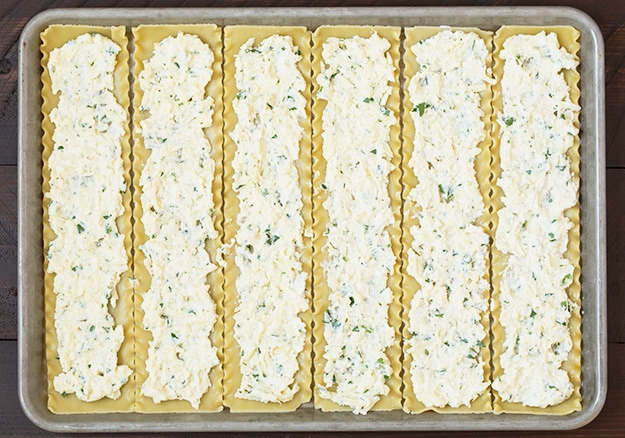 Ricotta cheese spread on lasagna roll ups in a baking tray