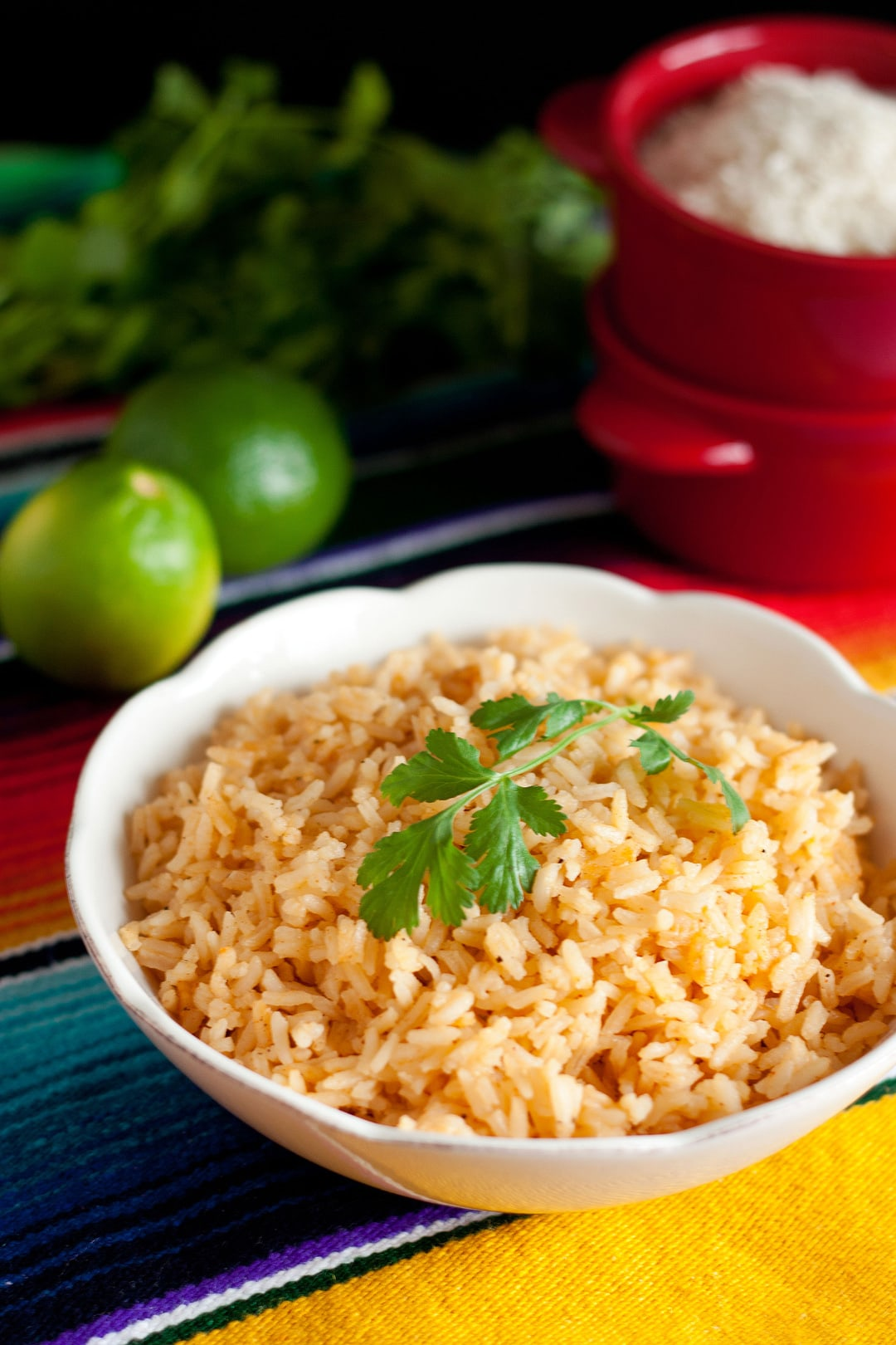 Mexican Rice in a white bowl