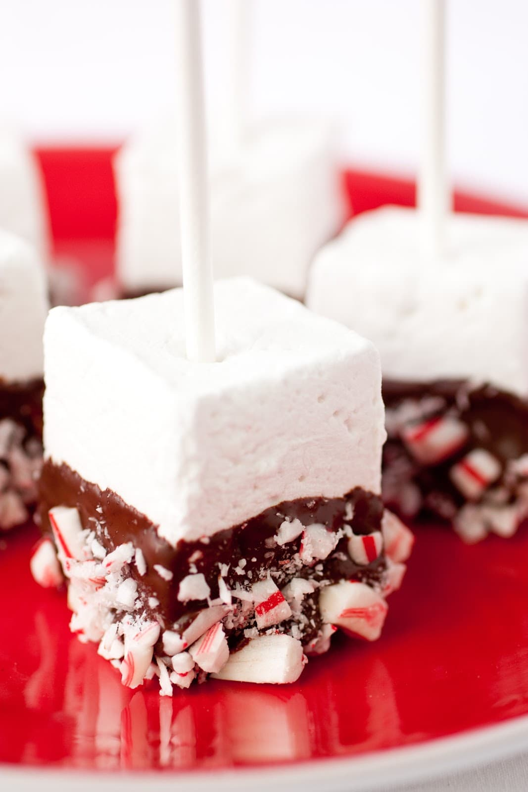 Homemade Peppermint Marshmallows - The Perfect Hot Cocoa Stirrers ...