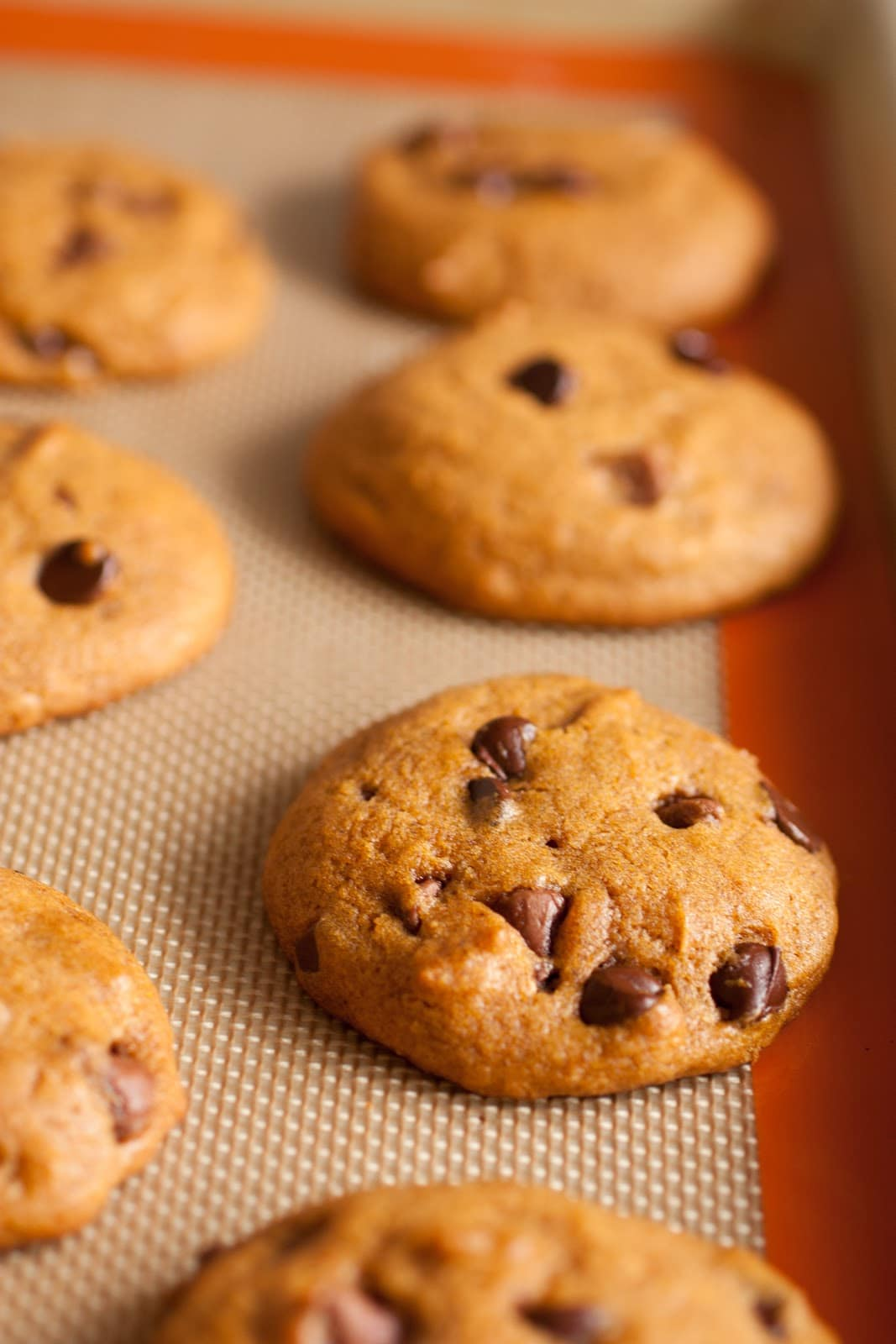 Pumpkin Chocolate Chip Cookies - Cooking Classy