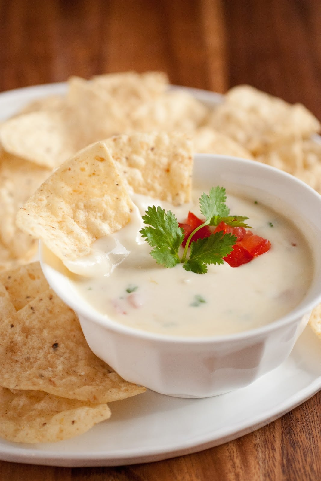 dip chile con queso queso steak dip chile con queso revved up red ...