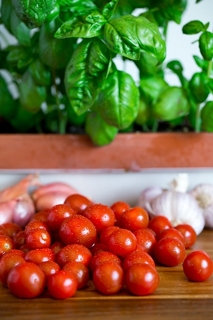Freshly washed cherry tomatoes with basil and garlic in the background