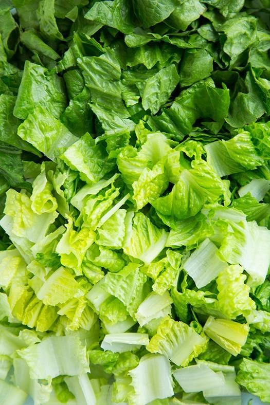 Lettuce Ombre