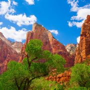 Zion National Park | Cooking Classy