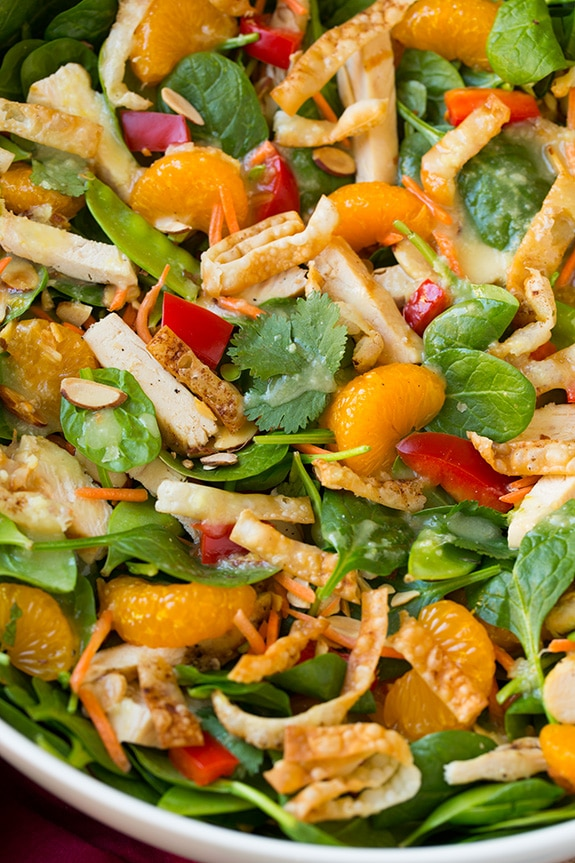 close up of mandarin orange salad with chicken in bowl