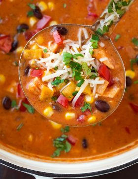 Ladle full of chicken enchilada soup with toppings.