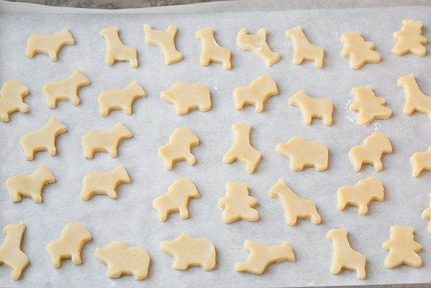 unfrosted circus animal cookies on baking sheet