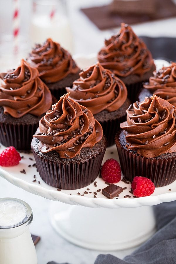 Plate full of chocolate cupcakes made from best chocolate cupcake recipe