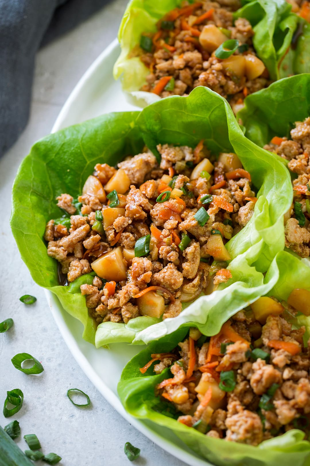 Bj S Lettuce Wrap Recipe