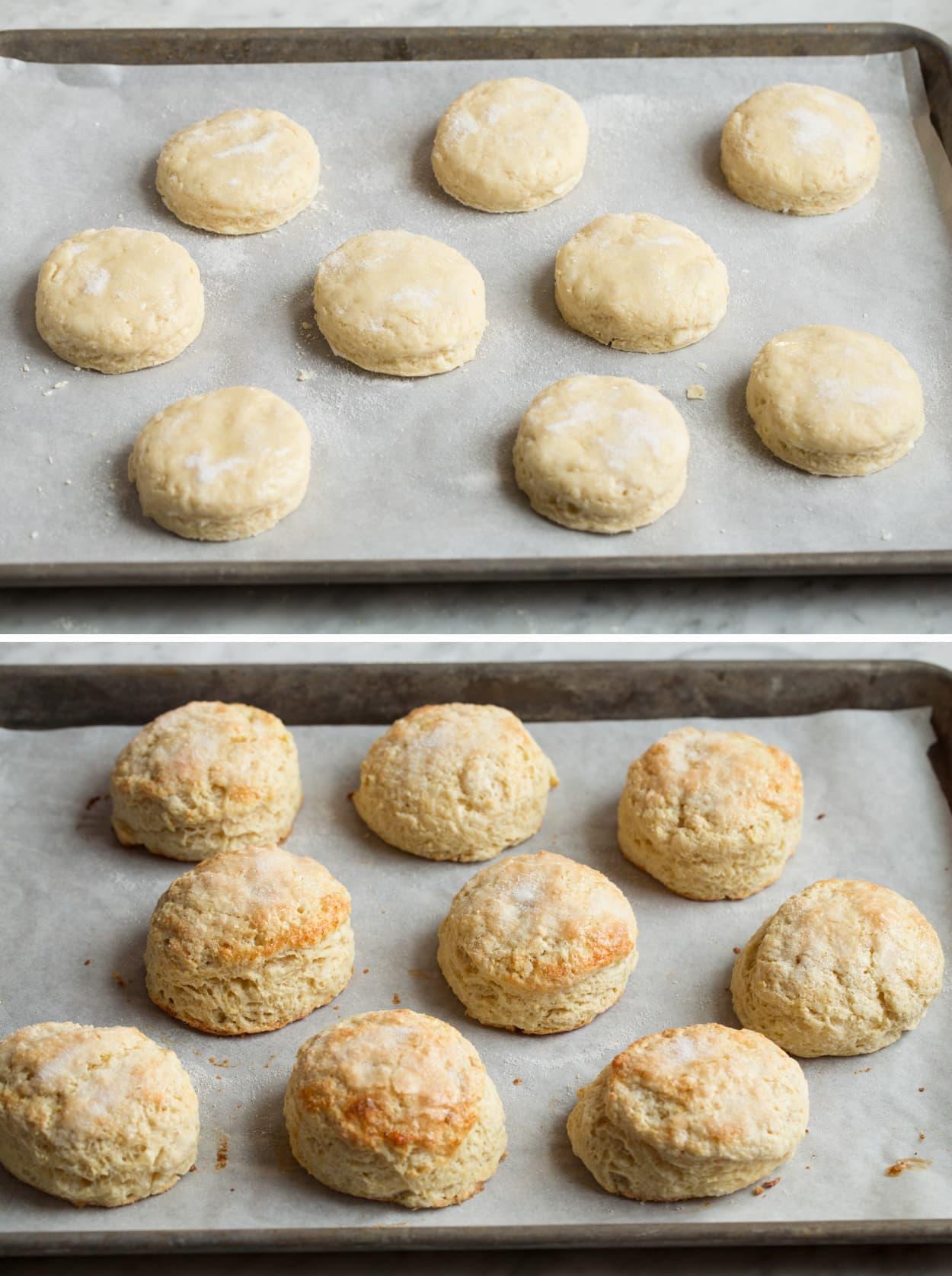Os biscoitos do shortcake da morango mostrados no pergaminho alinharam a folha de cozimento antes e depois do cozimento.