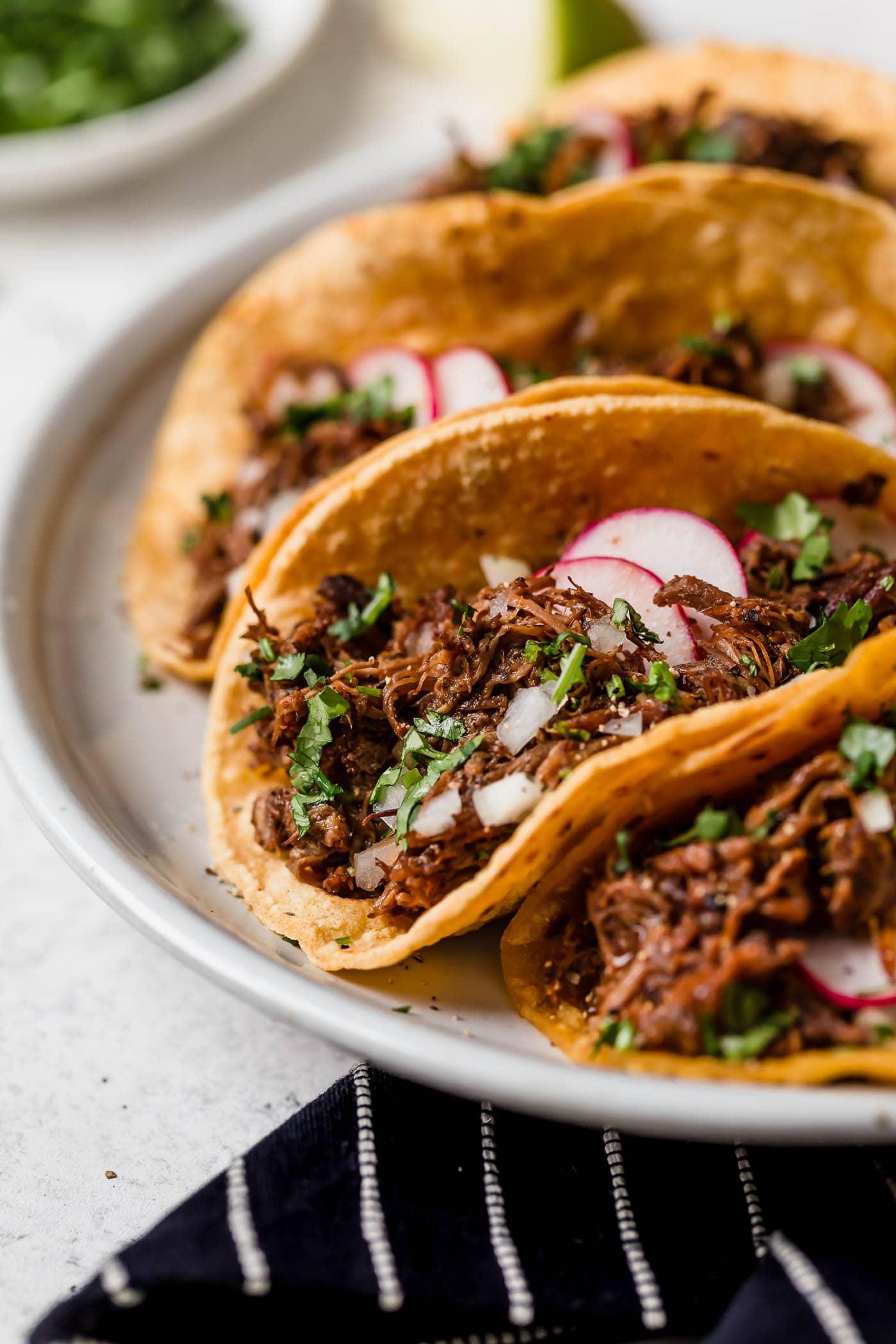Barbacoa beef layered into tacos