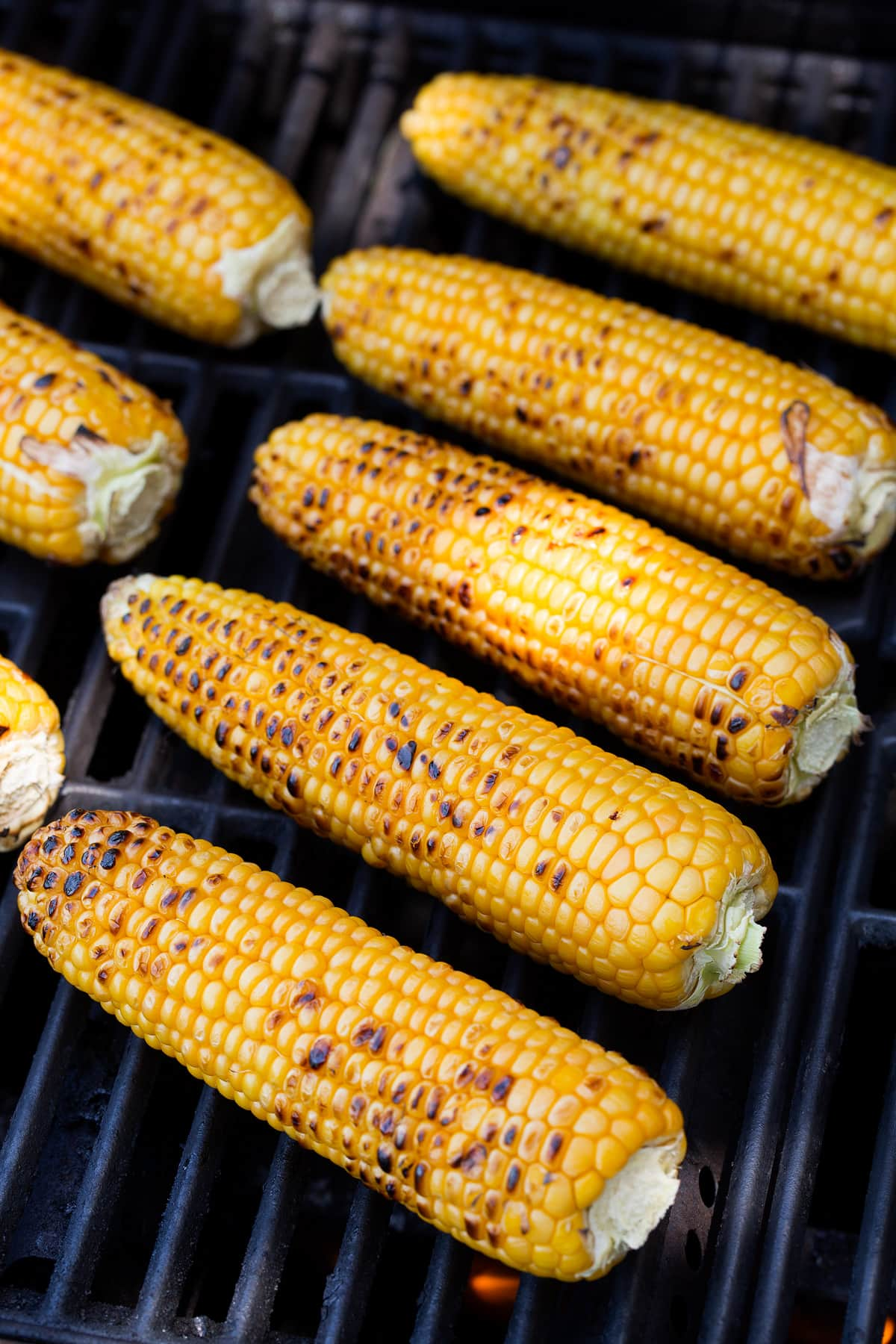 Eight ears of corn on a grill with dark char marks.