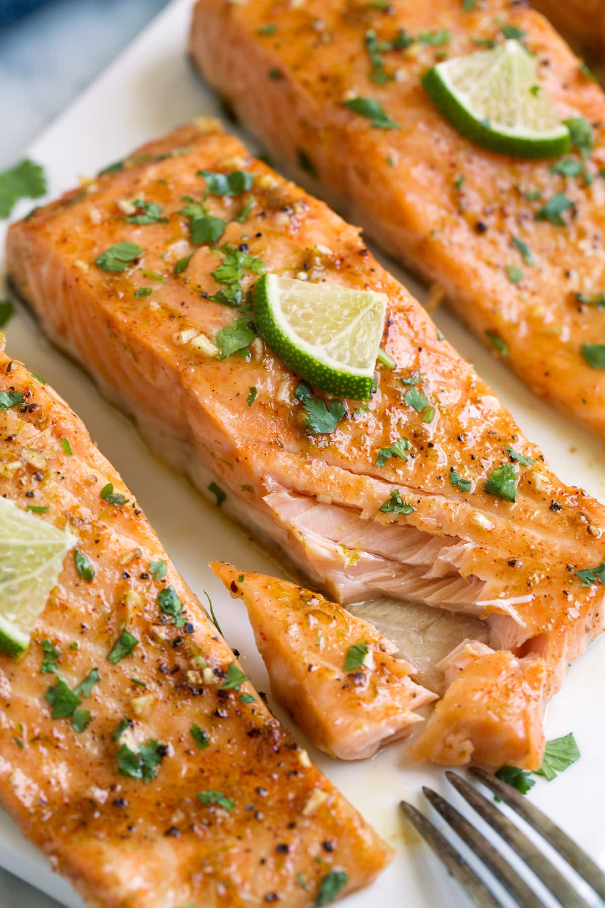 Salmon fillet with one pieces missing to show texture of interior.