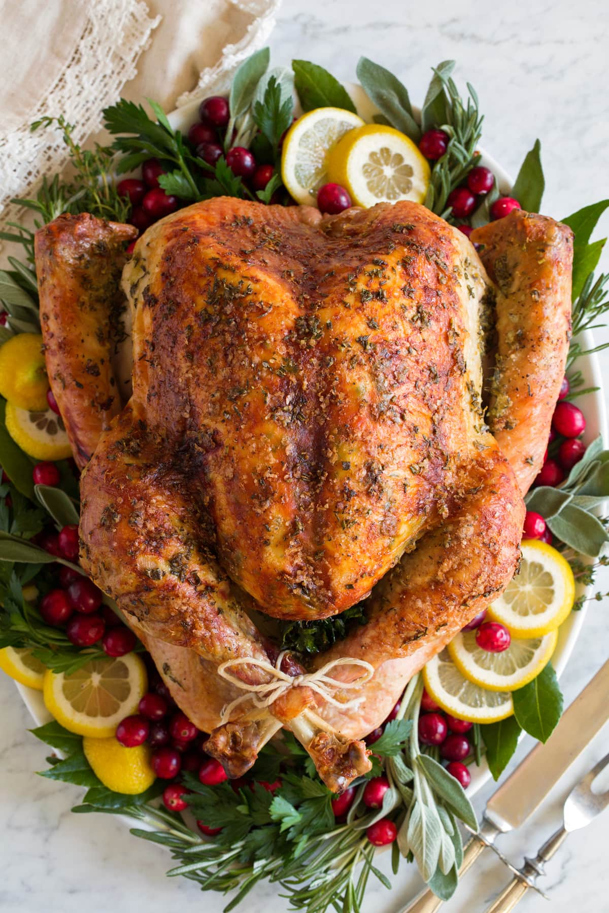 Overhead image of whole turkey on a white platter garnished with fresh herbs, lemon slices and cranberries around it.