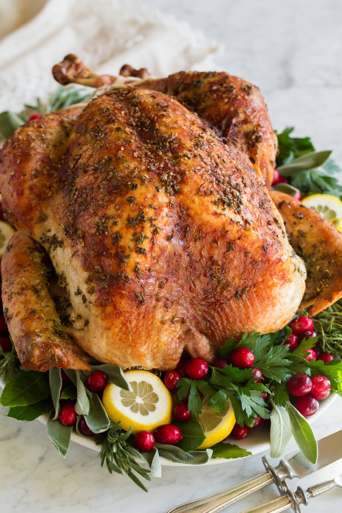Close up image of a roasted turkey.