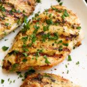 Close up image of grilled creamy garlic dijon chicken.