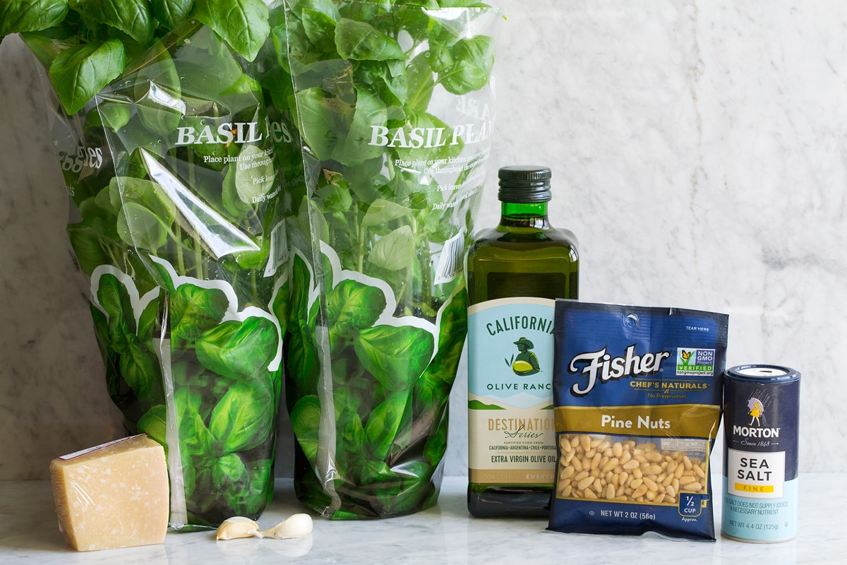 Image of ingredients used to make pesto shown. Includes fresh basil, parmesan, extra virgin olive oil, pine nuts, garlic and salt.