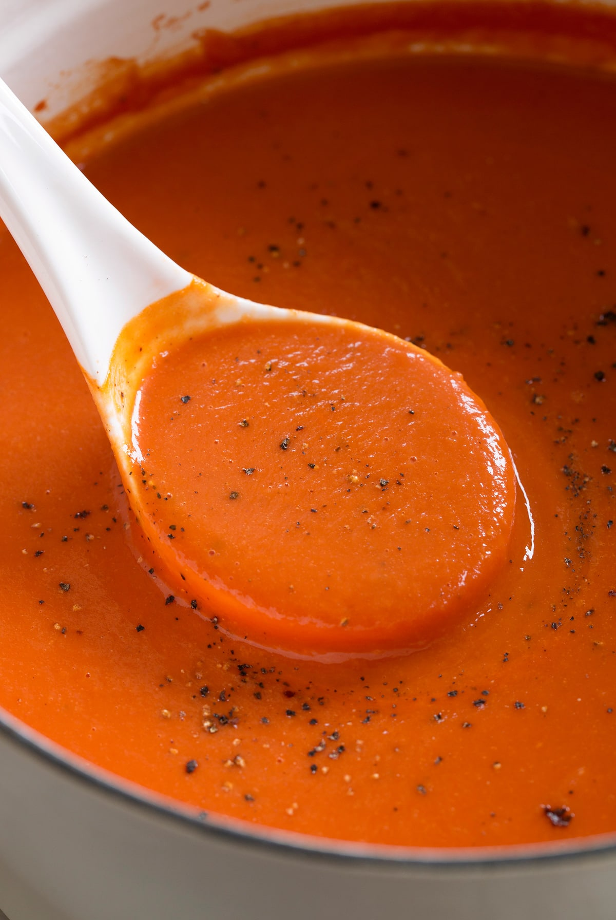 Ladle filled with homemade tomato soup.