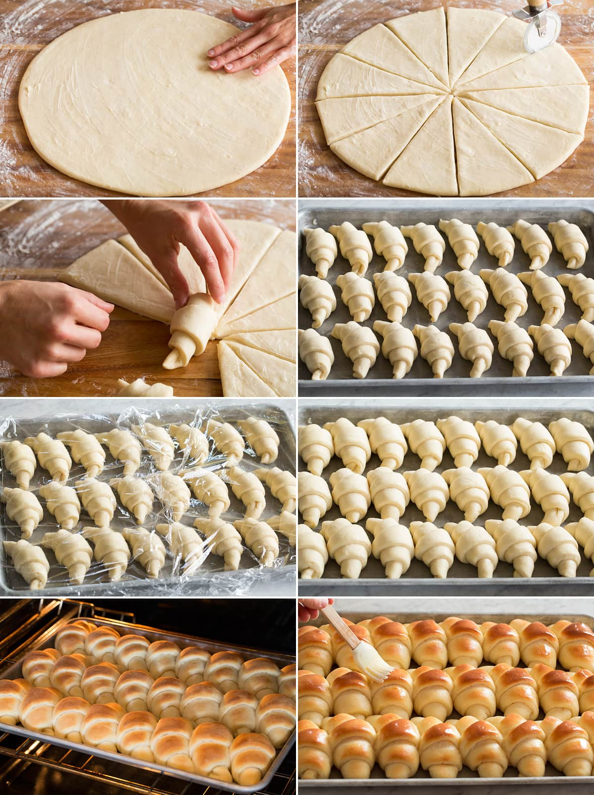 Collage of eight images showing final steps to making dinner rolls. Includes brushing dough round with butter, cutting into wedges, rolling wedges. Then rolls aligned in rows on baking sheet shown before and after rising then also after baking.